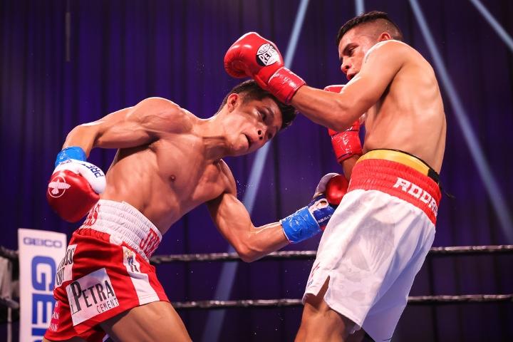 ancajas-rodriguez-fight (3)